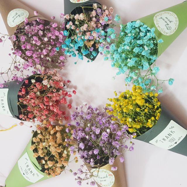 bó hoa khô dài 17cm. | Shopee Việt Nam