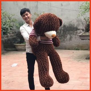 Gấu bông Teddy Cao Cấp khổ vải 1m4 Cao 1,2 màu Nâu hàng VNXK- Quà Tặng Yêu Thương
