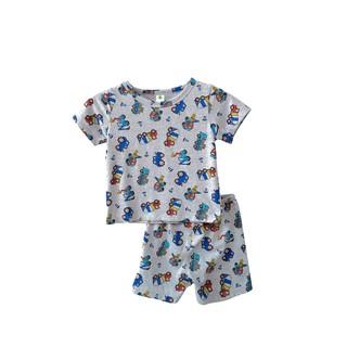 Bộ cotton quần đùi, áo cộc tay bé trai VT B63.2022