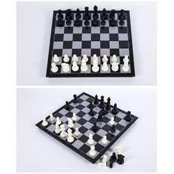 [Đồ Chơi Giải Trí] Bàn cờ vua nam châm-WDS