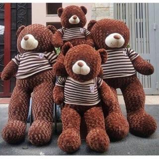 Gấu teddy khổ 1M-1M2-1M4❤️FREESHIP❤️nhập mã[KTSTO1] giảm 10k
