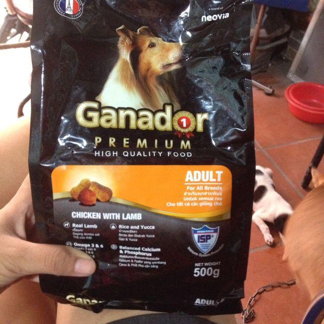 5 gói thức ăn chó Ganador Adult - Thức ăn cho chó trưởng thành vị gà và cừu 500g - 2417347 , 1075504476 , 322_1075504476 , 97500 , 5-goi-thuc-an-cho-Ganador-Adult-Thuc-an-cho-cho-truong-thanh-vi-ga-va-cuu-500g-322_1075504476 , shopee.vn , 5 gói thức ăn chó Ganador Adult - Thức ăn cho chó trưởng thành vị gà và cừu 500g