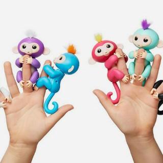 Fingerlings monkey – khỉ đu ngón tay