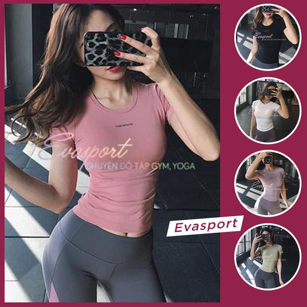 Áo Tập Gym, Yoga, Aerobic, Thể Thao, Zumba Nữ Dệt Kim, Co Giãn Tốt, Ôm Dáng Fit Body, Cộc Tay Đùi Ami EvaSport