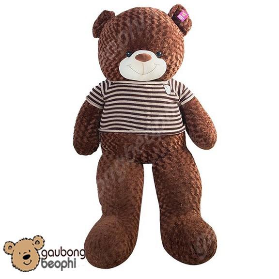 Gấu teddy áo len màu chocolate