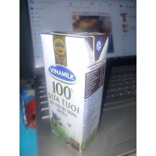 Sữa tươi tiệt trùng socola
