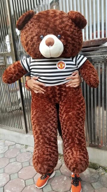 Gấu bông teddy 1m4 khổ cao 1m2