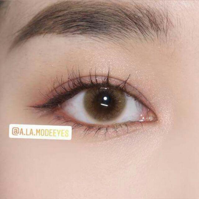 Combo ( Lens + Ngâm + Khay gương ) / Lens Brown không độ