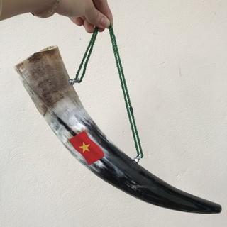 Kèn Tù Và sừng bò châu phi - cổ vũ tinh thần đội tuyển Việt Nam Vô Địch thumbnail