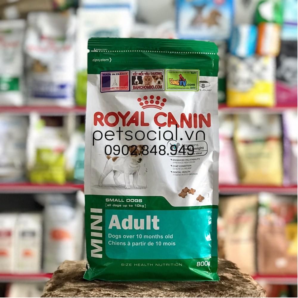 Thức ăn hạt Royal Canin Mini Adult 800g