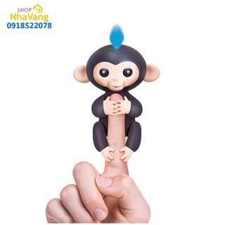 HCM- Khỉ leo ngón tay