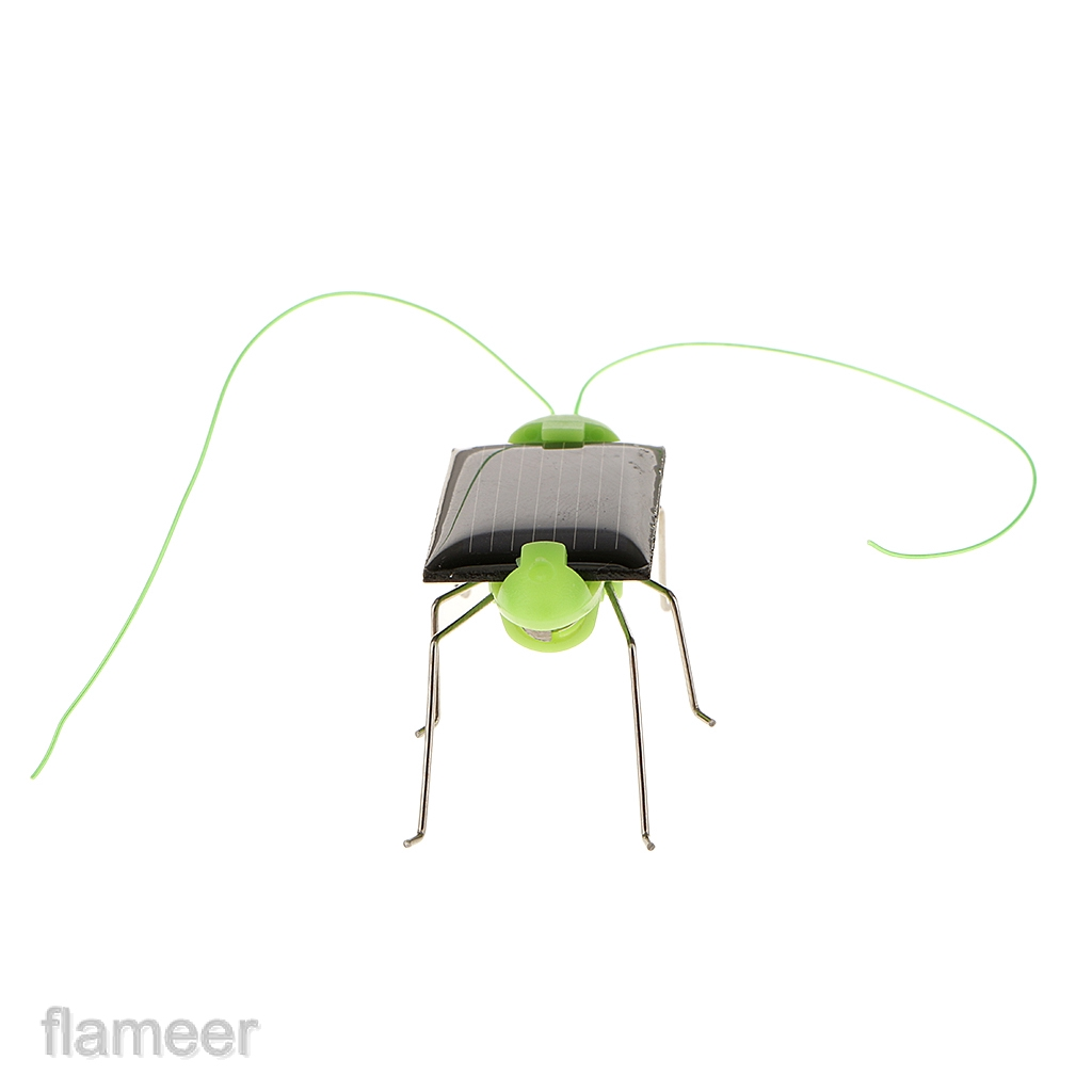 Kids Science Educational Solar Powered Grasshopper Gadget Toy Gift