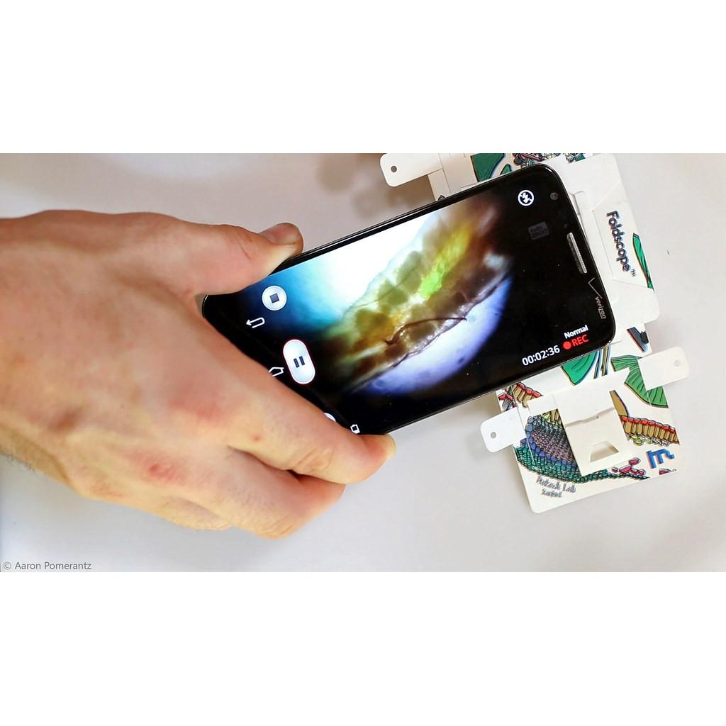 Kính Hiển Vi Giấy (Foldscope) - Khám Phá Vi Thế Giới Diệu Kỳ