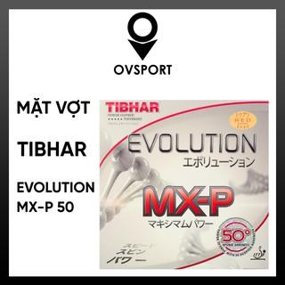 Mặt Vợt Tibhar Evolution MX-P50 OFF+, Tốc Độ và Độ Xoáy Cao
