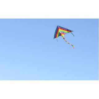 Fashion 1m Rainbow Delta Kite outdoor sports for kids Toys easy to fly