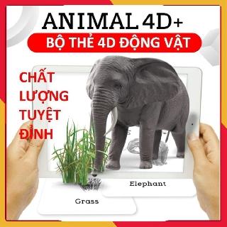 Đồ chơi giáo dục💚FREESHIP💚Bộ thẻ động vật ANIMAL 4D ươm mầm ước mơ tương lai của bé yêu