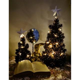 Cây thông Noel lung linh và ấm áp trang trí trong nhà, cửa hàng