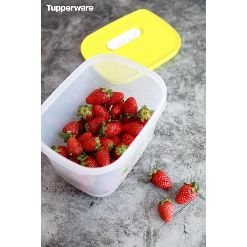 Tupperware Bộ hộp trữ mát Vensmart 4