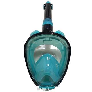 Adult Anti-Leak Detachable Camera Mount Snorkel Mask Set