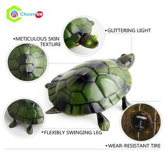 Đồ Chơi Điều Khiển Mô Hình Động Vật ChuanToy DCA068 – Con Rùa