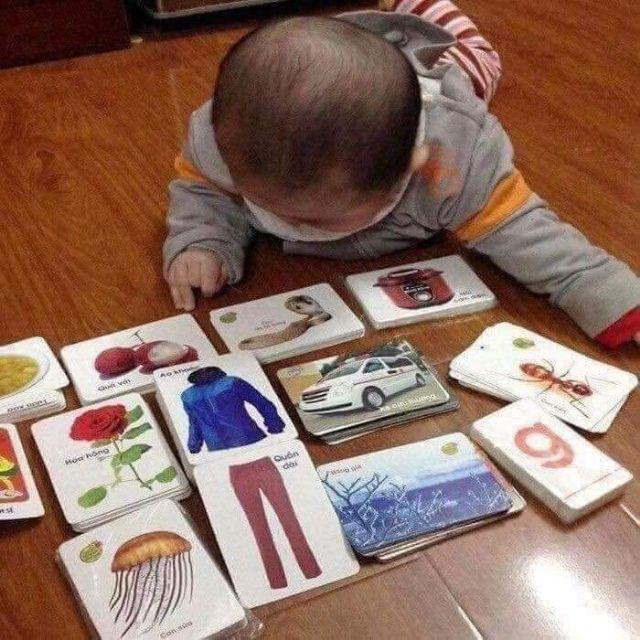 Bộ thẻ học 16 chủ đề cho bé