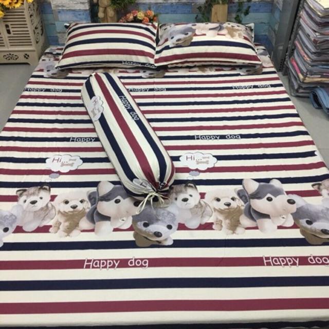 Bộ Drap Cotton Hàn Quốc 4 món chọn mẫu
