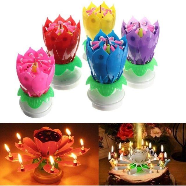 Nến sinh nhật 3D Hoa sen