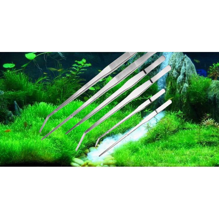 Nhíp trần trồng cây thủy sinh bằng thép không rỉ kích thước 28, 38, 48cm