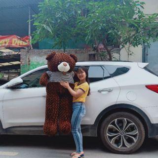 GẤU BÔNG TEDDY 1M6 CAO CẤP