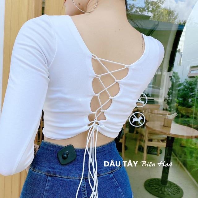 Áo kiểu nữ thun Borip dày dặn (có đệm ngực)