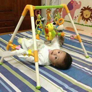 Kệ chữ A con vẹt có nhạc cho bé về nhiều 🐦🐦 🐦 Sản phẩm phù hợp làm đồ chơi cho trẻ sơ sinh 1 tháng tuổi