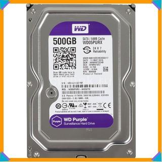 Ổ cứng 500gb Purple bảo hành 24 tháng thumbnail