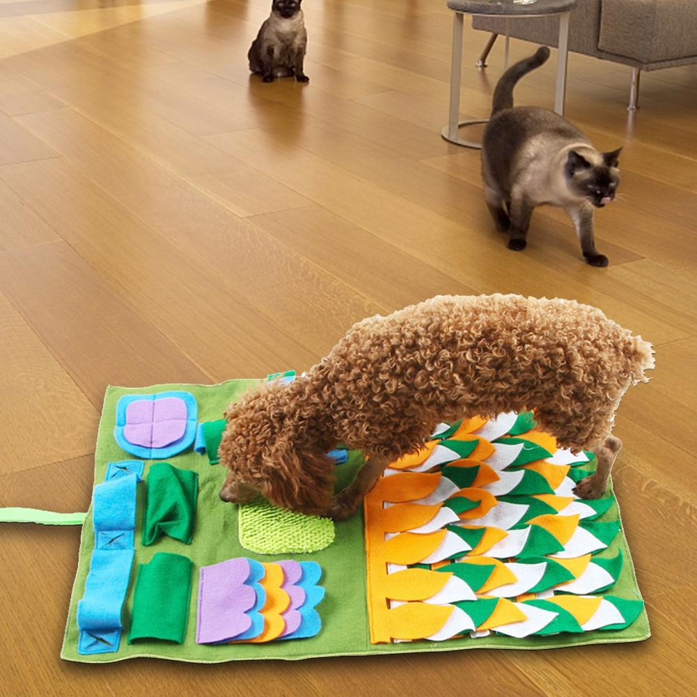 Thảm huấn luyện khứu giác cho thú cưng bằng sợi tổng hợp