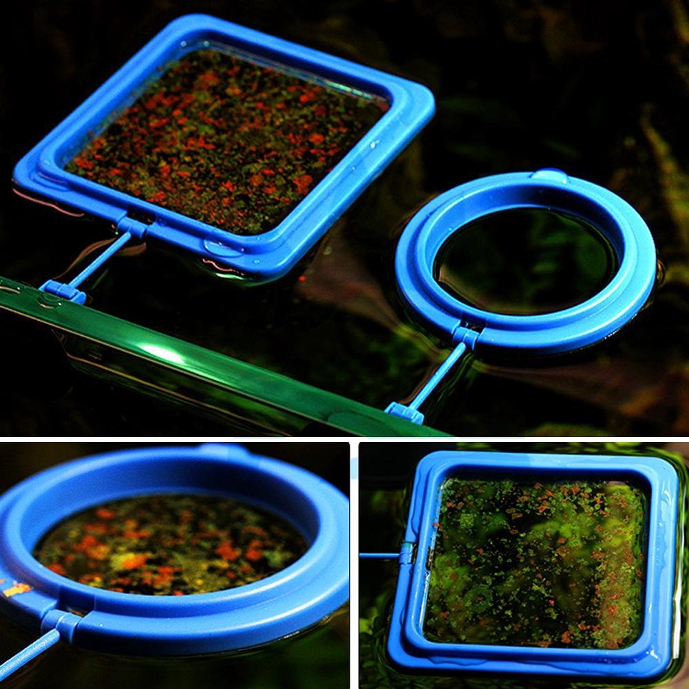 Feed Floating Fish Food Ring Aquarium Tank Fishes feeding Feeder