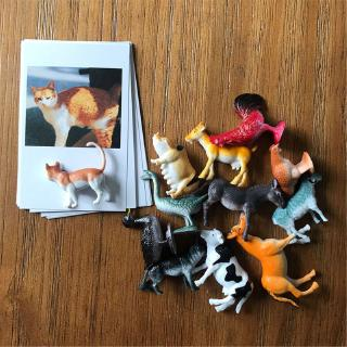 YOUN* Montessori Animal Matched Toy Preschool Education Toys Toddler 4-8 Years Old