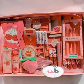 Bộ Trang Điểm màu Hồng Cam AnyLady.Gồm 21 món makeup cao cấp cần thiết cho bạn nữ sinh viên ,văn phòng.