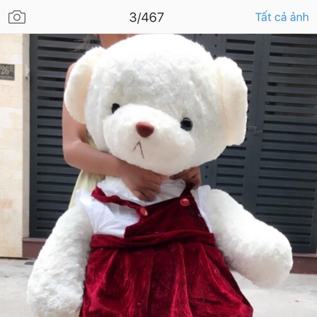 Gấu bông mắc áo đầm yếm nhung đỏ - 2976656 , 444585918 , 322_444585918 , 270000 , Gau-bong-mac-ao-dam-yem-nhung-do-322_444585918 , shopee.vn , Gấu bông mắc áo đầm yếm nhung đỏ