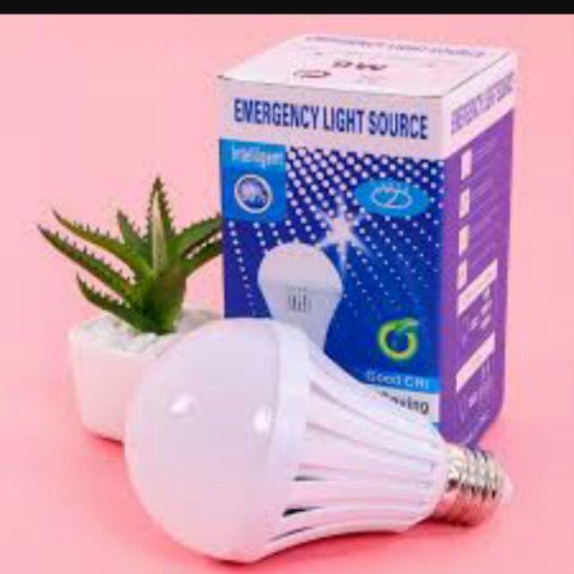 10 Bóng đèn tích điện thông minh 12W