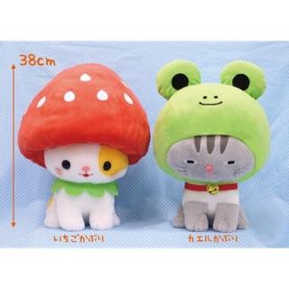 Amuse – Mèo đội mũ cosplay Nekokkaburi