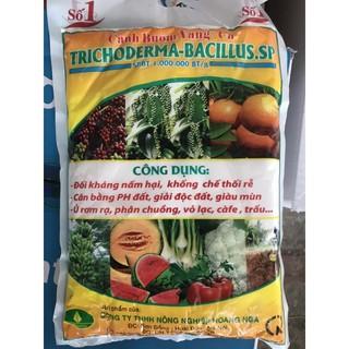 Nấm đối kháng Trichoderma-Bacillus.sp loại 1kg