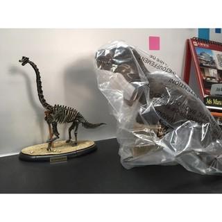 Mô hình khủng long Bạo Chúa Papo T-rex (Brown)