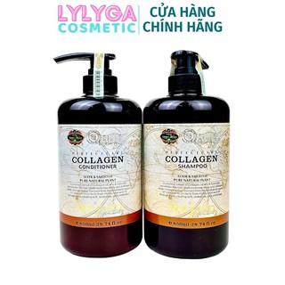 Cặp dầu gội xả Collagen Mefaso Italia phục hồi tóc hư tổn. dầu gội, dầu xả bổ xung collagen giúp tóc chắc khỏe, mềm mượt thumbnail