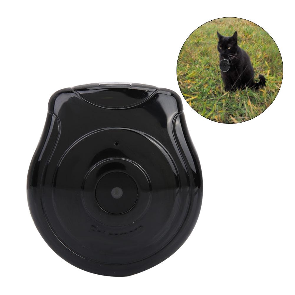 Collar Accessories Cat Dog Mini Pet LCD with Recorder Anti-lost Screen Camera Camera Video
