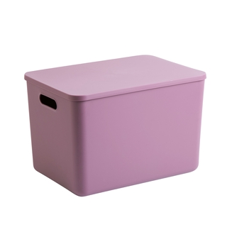 Home storage box desktop debris storage box with lid plastic snack cosmetic storage box finishing box household