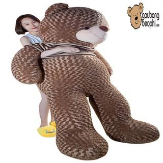 [ GIÁ SOCK ]Gấu teddy áo len cao cấp màu hạt dẻ khổ vải 2M