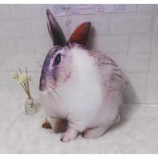 Gối Ôm 3D Hình Con Thỏ Trắng quà tặng sinh nhật độc đáo cho bé con nhà bạn