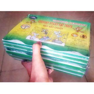 Combo 10 miếng Keo dính chuột | 10 Keo bẫy chuột | 10 Keo dán chuột hàng Việt Nam Đạt Phát