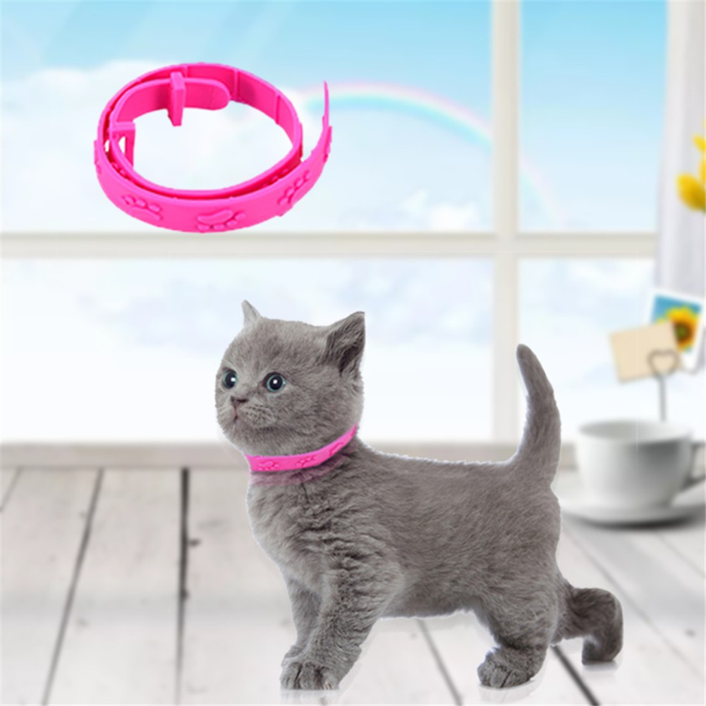 Flea Collar Pet Cat Collar for Cat to Get Rid of Fleas