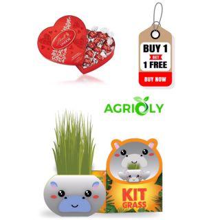 𝐌𝐔𝐀 𝟏 Chậu cây trồng Agrioly Grass Kit -hình HÀ MÃ 𝐓𝐀̣̆𝐍𝐆 𝟏 Hộp Socola Lindt 98g