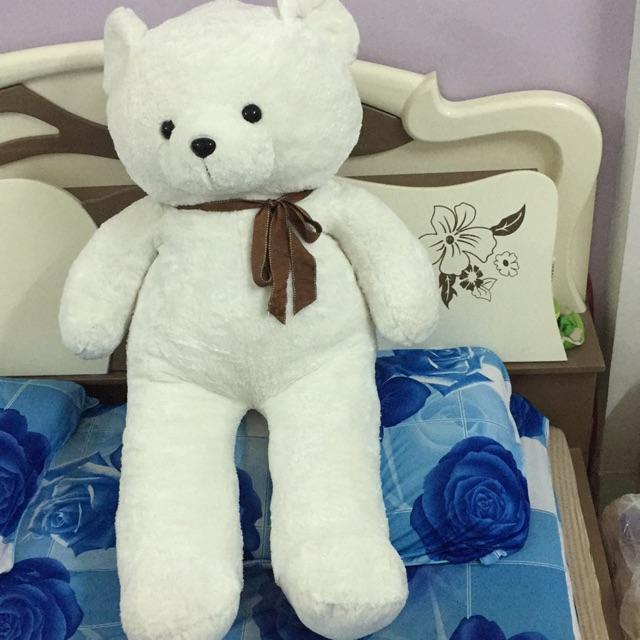 gấu teddy 1,2m